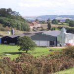 Bedale farm 1